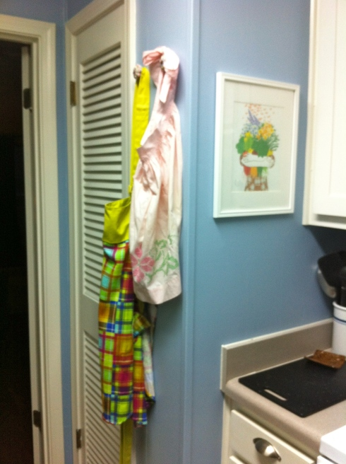 Kitchen with Aprons 2